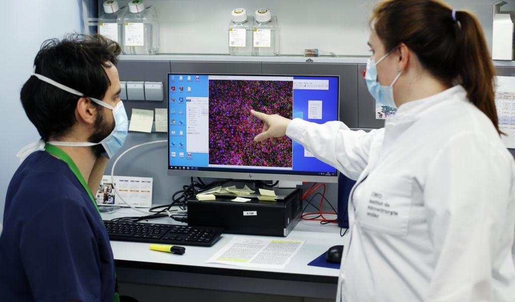 laboratorio genetica